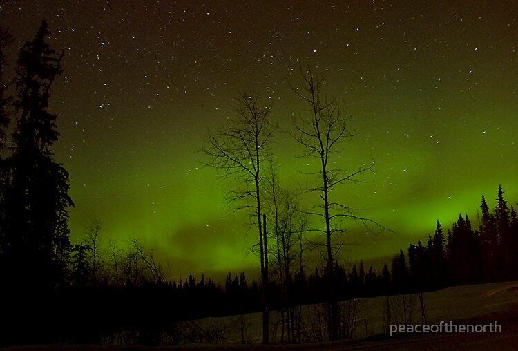 Northern Lights #7 by peaceofthenorth