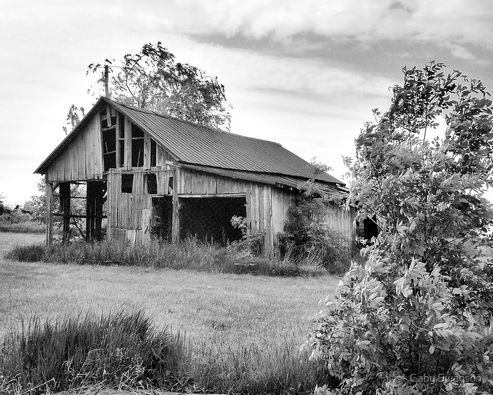 Old Barns Series #1 by Gabriele Swanson