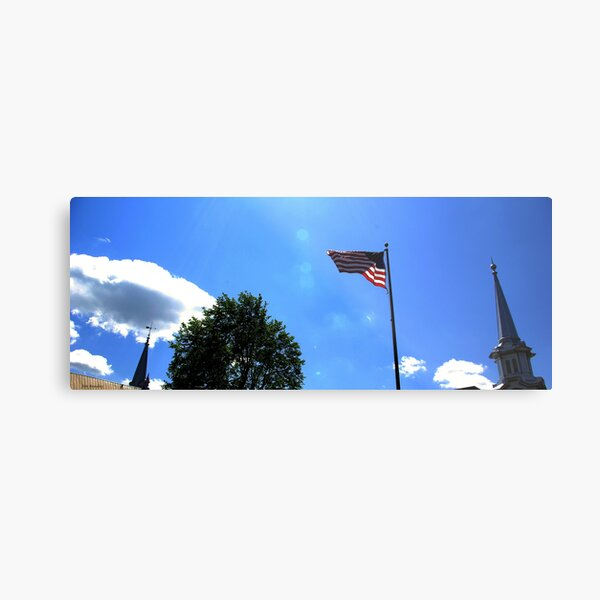 The Second Freedom Metal Print