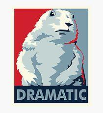 Dramatic Chipmunk Photographic Print