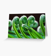 Dancing Fronds Greeting Card