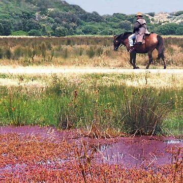 Aussie Horseman by rozmcq