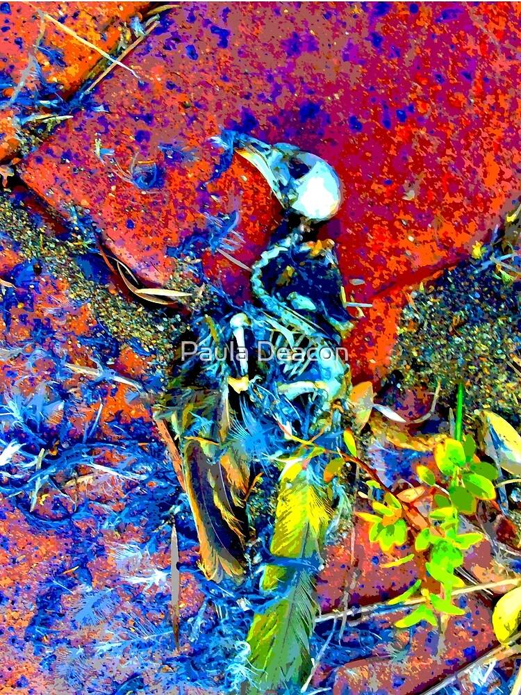 Bright bird skull and skeleton 01, Paula DeaconPE by DeaconPE