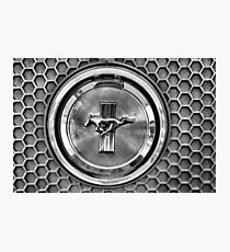 Mustang honeycomb grill Photographic Print