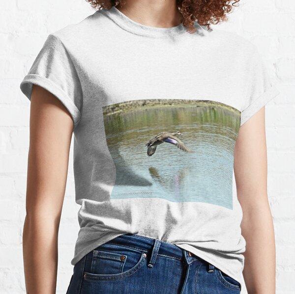Pacific Black Duck (392) Classic T-Shirt