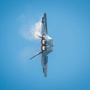 "F-22 Raptor Fighter Jet ""Turn & Burn"" by stevenpam"