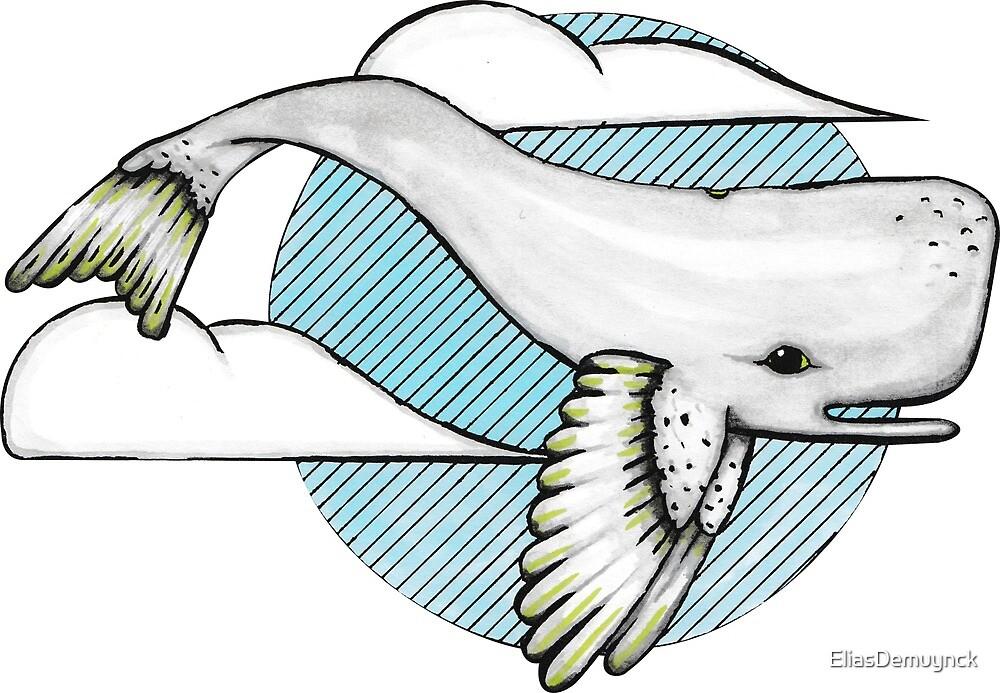 flying whalebird by EliasDemuynck
