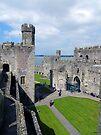 Looking Down on Caernarfon Castle by trish725