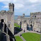 Looking Down on Caernarfon Castle by trish725