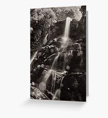 Nelson Falls, Tasmania 1 Greeting Card