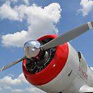Großaufnahme des Propellers auf einem Warbird AT-6 Texan. von StocktrekImages