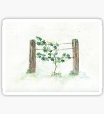 """""""grape vine"""" watercolor Sticker"""