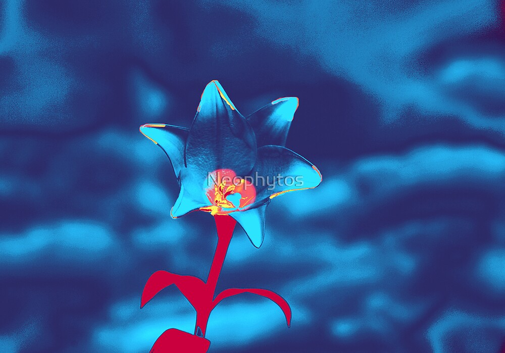 Lilies in Blue ' three ' by Neophytos