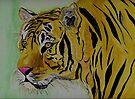 The Sad Tiger by Anne Gitto