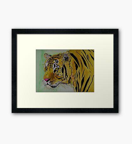 The Sad Tiger Framed Print
