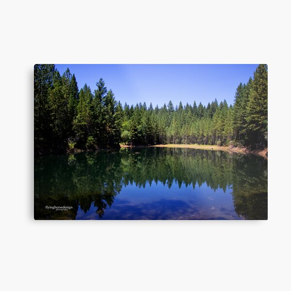 Paradise Lake - Northern CA #1 Metal Print