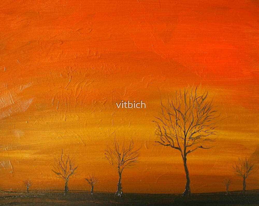 Outback Sunset by vitbich