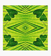 Geometric Forest Hearts Photographic Print