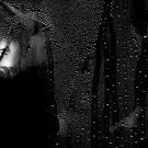 Waterdrops behind the Window by Imi Koetz