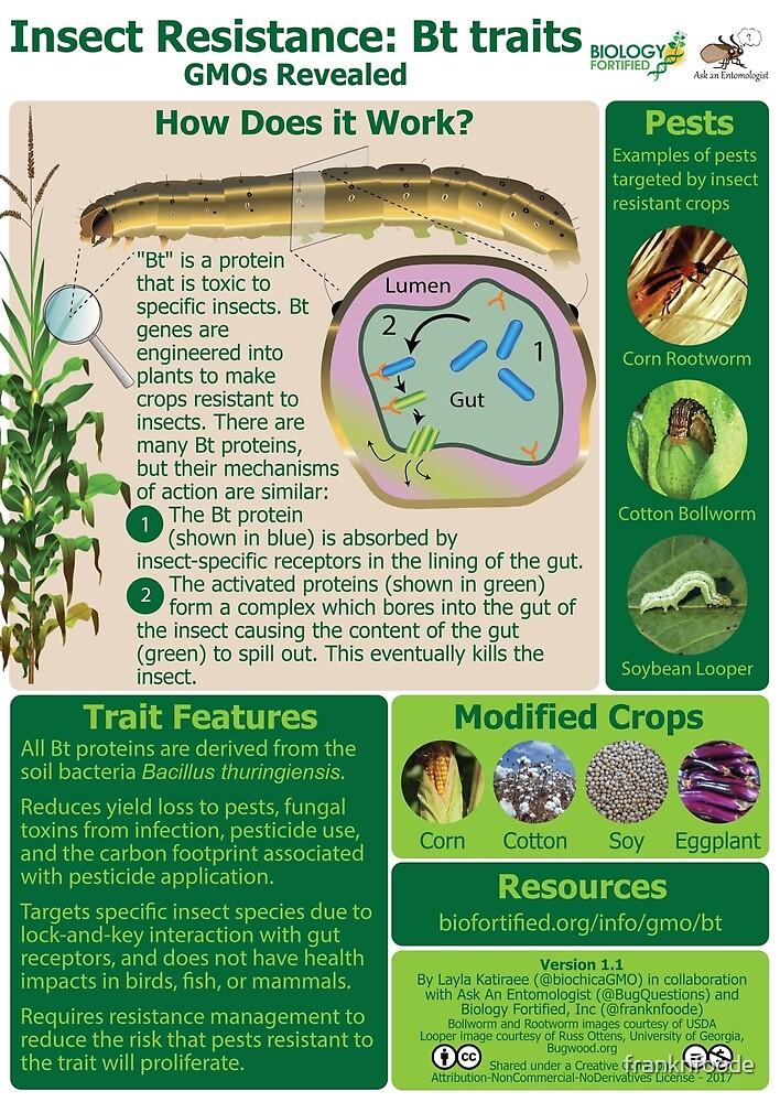 GMOs Revealed - Bt traits - v1.1 by franknfoode