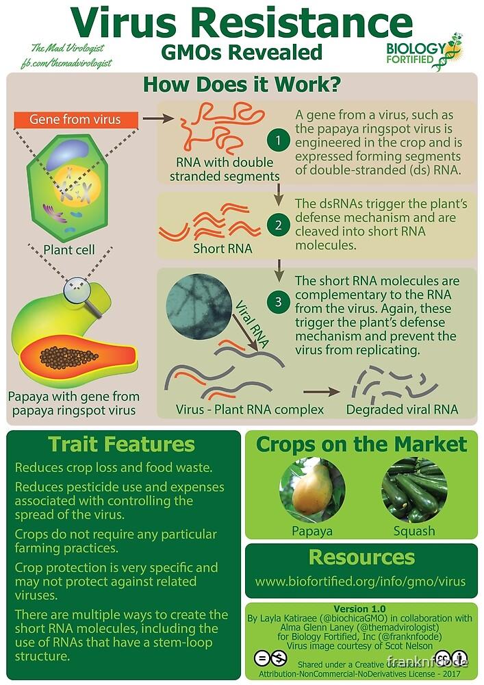 GMOs Revealed - Virus Resistance v1.0 by franknfoode