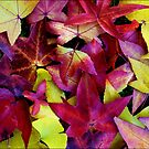 Those LEAVES  *2 by Magee