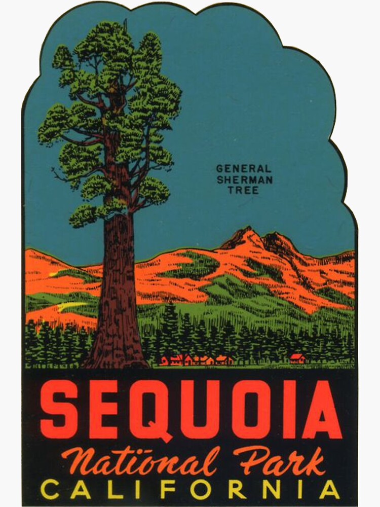 Sequoia National Park Vintage Travel Decal by MeLikeyTees