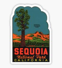 Sequoia National Park Vintage Travel Decal Sticker