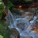 The Fairy's Waterfall by Bev Woodman