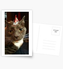Party Animal  Postcards