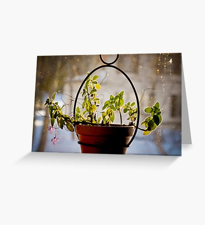 3px Outer Glow Greeting Card