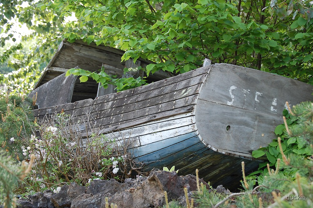 shipwreck by duckie