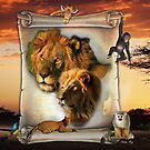 The Lion King of Africa by NadineMay