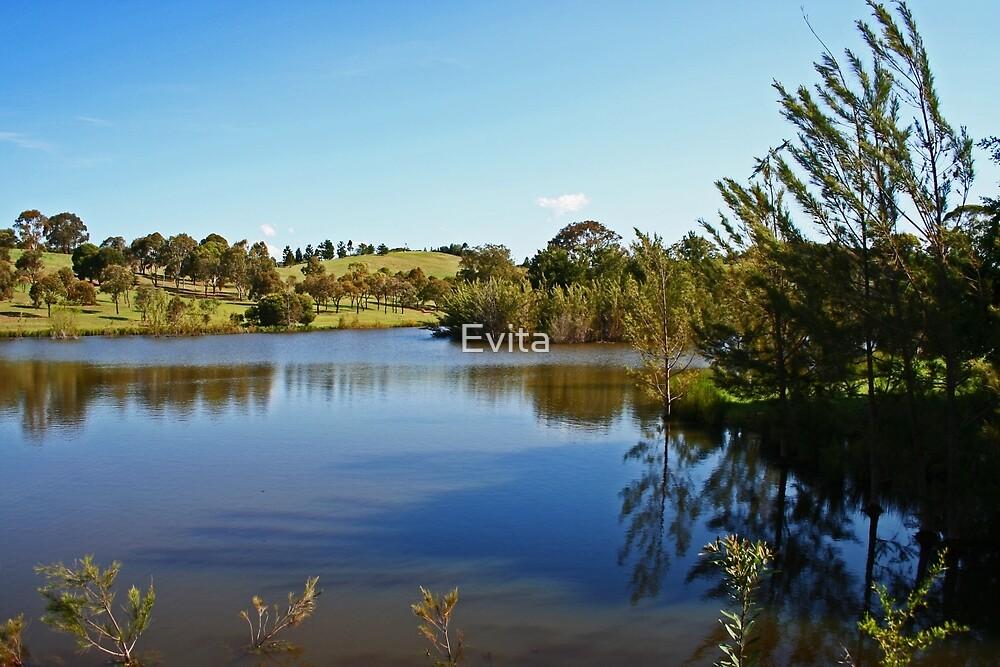 At The Lake by Evita