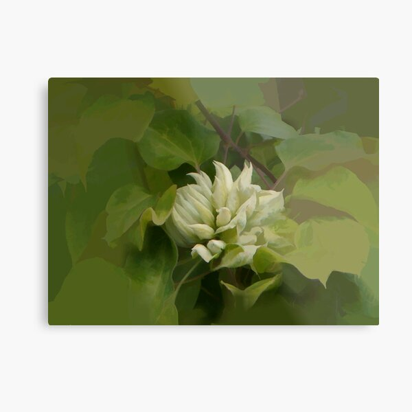 abstract of Green Clematis Metal Print