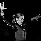 Flamenco Dancer (2) by MikeSquires