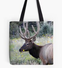 Elk in field Tote Bag