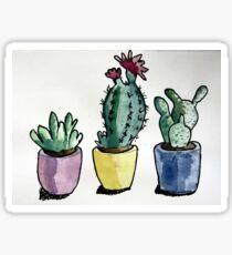 Succulent Watercolour  Sticker