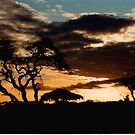 African Sunset by BigAl1