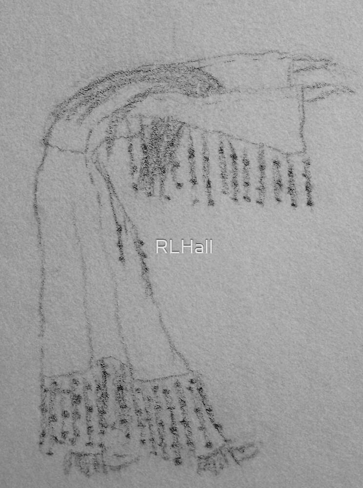 Native Dancer by RLHall
