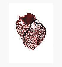 Watercolour Heart  Photographic Print