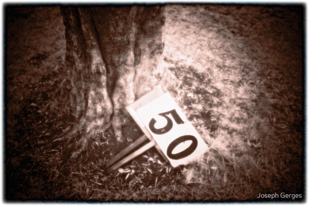 50 #1 by Joseph Gerges