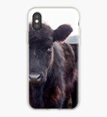 Brown Cow  iPhone Case