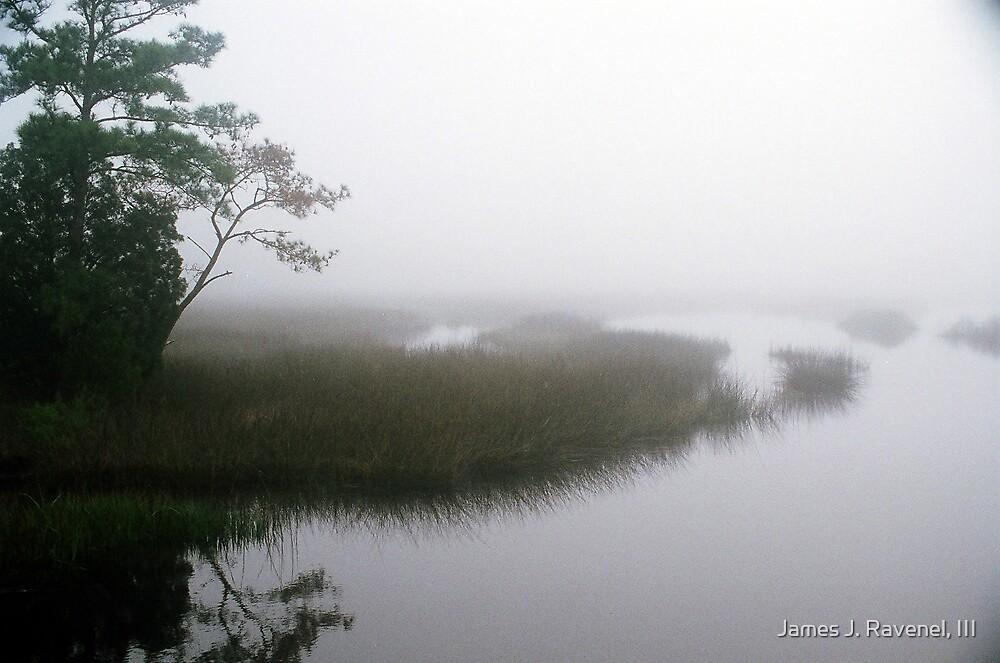 Foggy Morning At Tea Farm Creek by James J. Ravenel, III