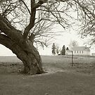 Country Church  by jewelskings
