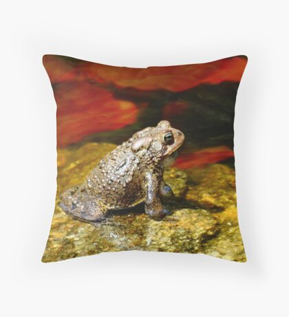 Welcome to my pad! Throw Pillow