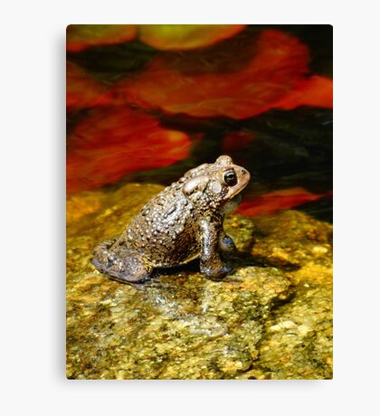 Welcome to my pad! Canvas Print