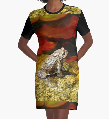Welcome to my pad! Graphic T-Shirt Dress