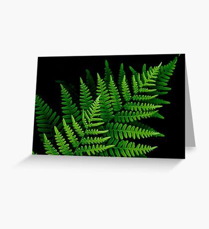 fantastic fern fronds Greeting Card