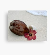 Beautiful Rarotonga Canvas Print